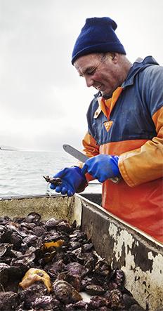 pescatore-comit-home